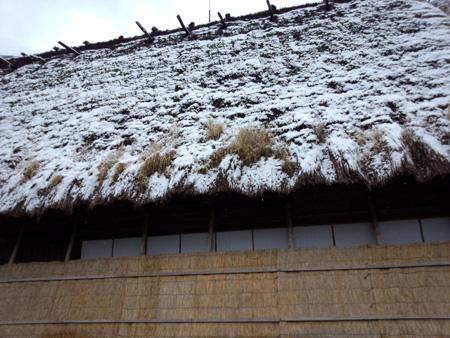 白川郷 ~ 国重文 旧遠山家民俗館 ~茅葺き屋根も雪で白くなった(n'∀')η ⑤
