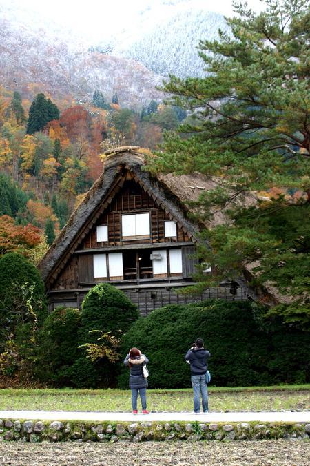 白川郷の山里はいよいよ紅葉シーズンも終盤♪色付いた紅葉も冬支度へと移り変わります! ③