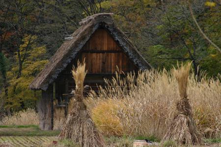 ~冬紅葉~紅葉の季節が終わりに近づき、もう冬の気配が漂い始める・・・世界遺産 白川郷 ③