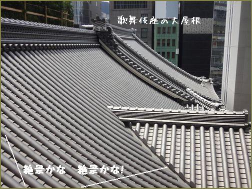 見事な屋根でござる。高そう・・・