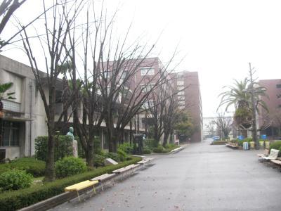松山大学IMG_1741