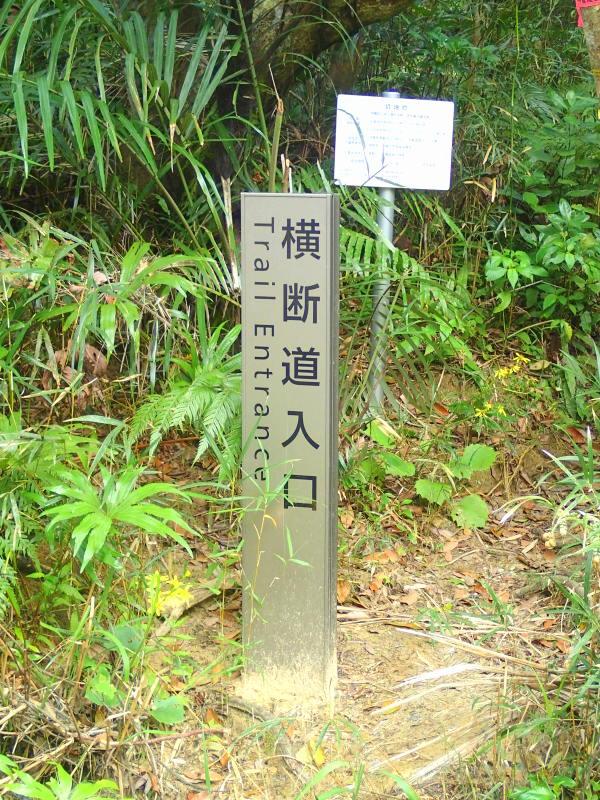 西表島 マヤグスクの滝 トレッキングツアー KEN GUIDE