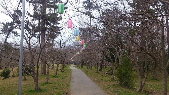 一本松公園1