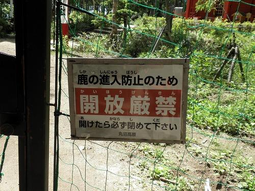 2013-nikkoushiranesan-05