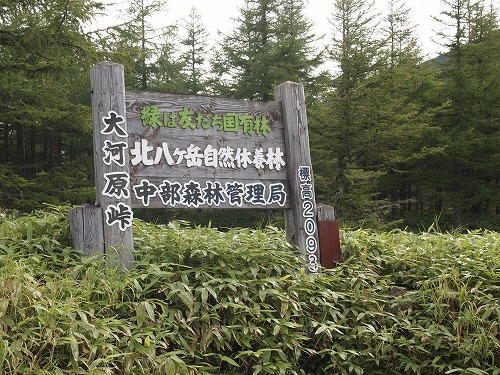 20130826_tatesinayama-045