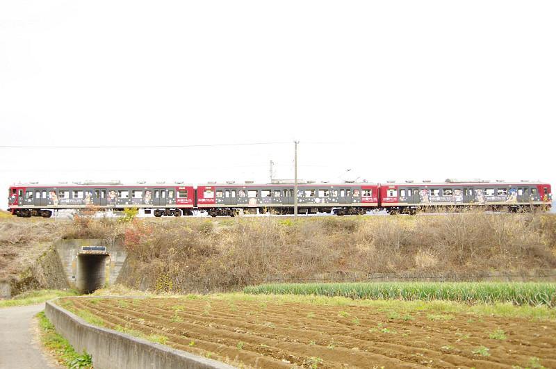 natsumachi1110-17.jpg