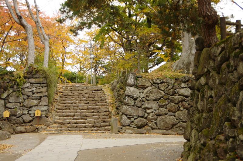 natsumachi1110-21.jpg