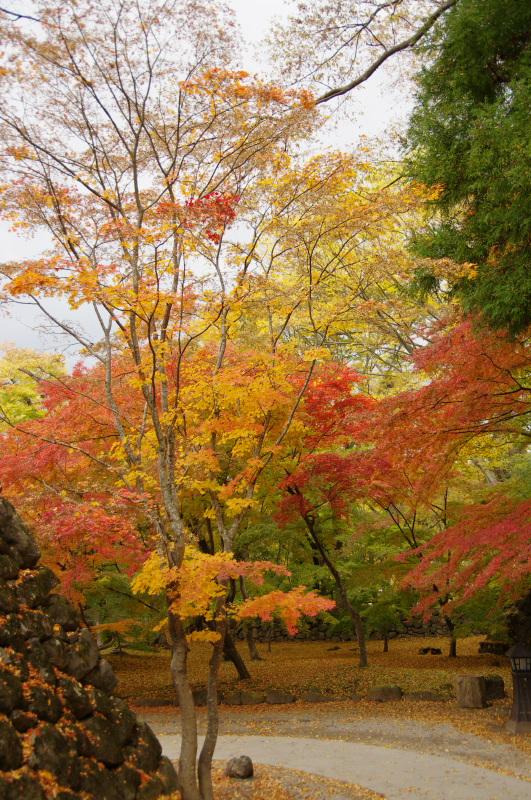 natsumachi1110-3.jpg