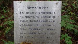 ks100610.jpg