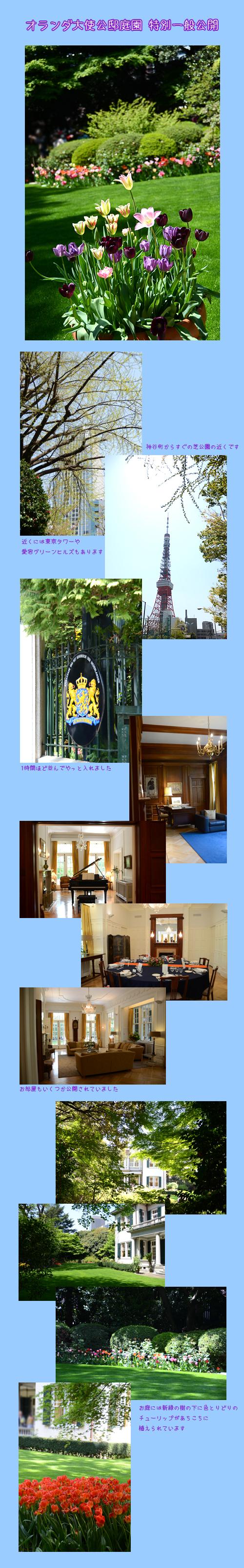 4月13日オランダ大使館