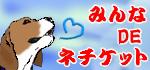 201306092327494b5.jpg