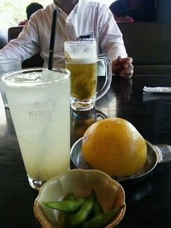 508 ビール ブログ