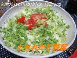 623野菜サラダ ブログ