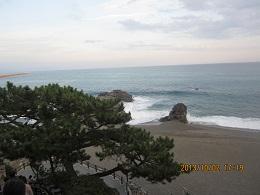 102桂浜1 ブログ