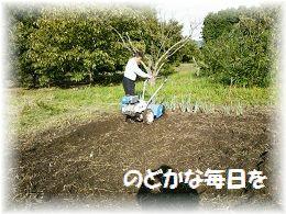 畑仕事基之 ブログ