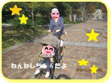 1101ばぁばぁとお散歩 ブログ