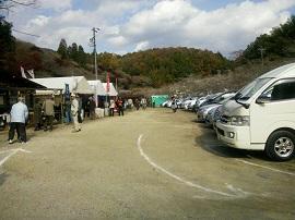 1121四季桜会場 ブログ