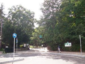 円山公園①