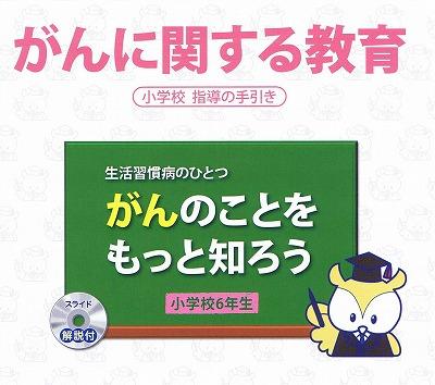 130504gankyouiku.jpg