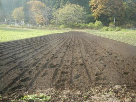 かえで農場 (1)