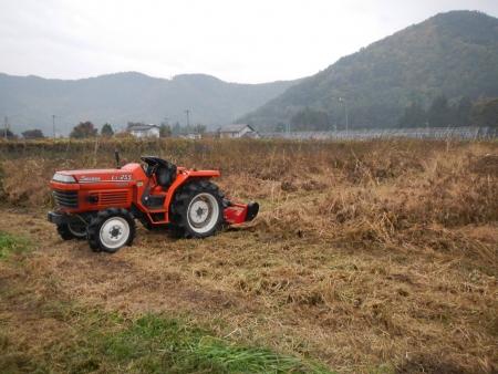 大豆の収穫1 (4)