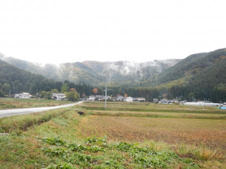 下の田の稲刈り (2)