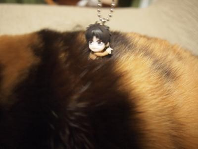 ミカサがあっけなくやられた三毛猫型