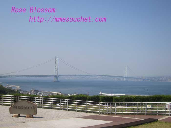 bridge20130603.jpg