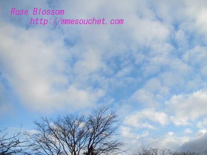 sky20130328.jpg