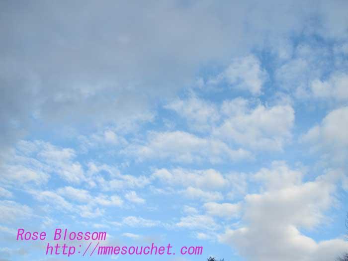 sky201303281.jpg