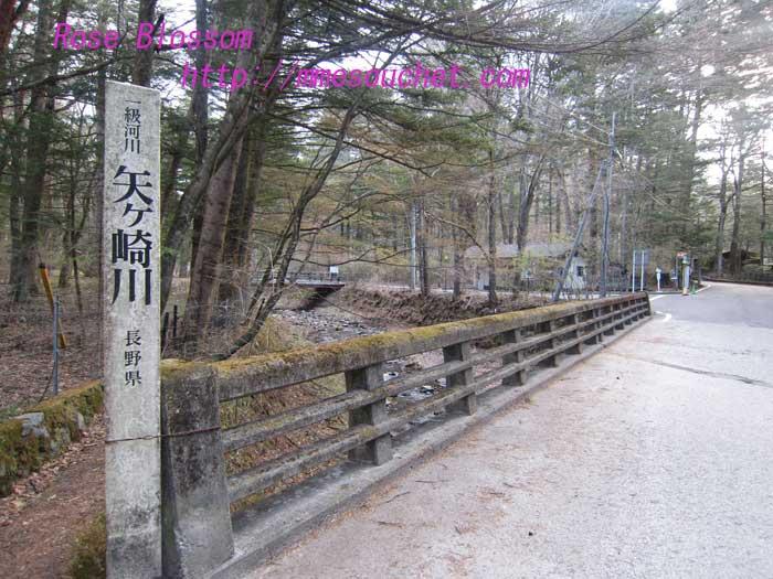 yagasakigawa20130427.jpg
