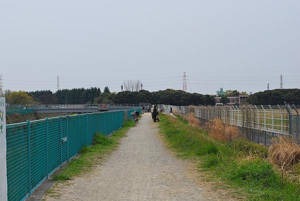 千里川の土手