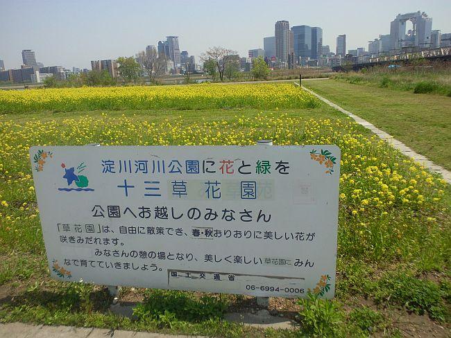 十三草花園