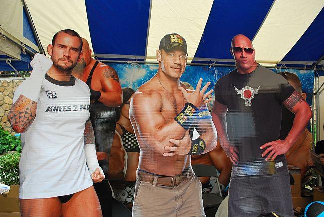 WWE選手のパネル