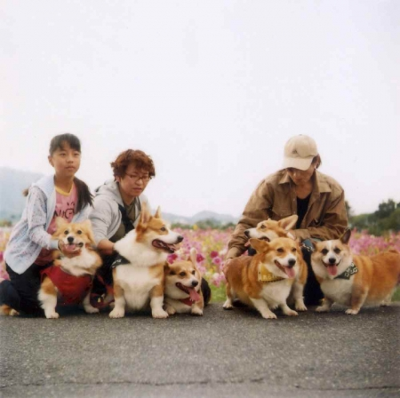 TOY-352_Yashica.jpg