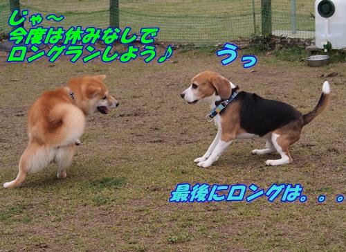 P3289489.jpg