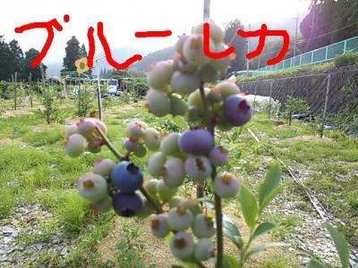 20130629_221613.jpg