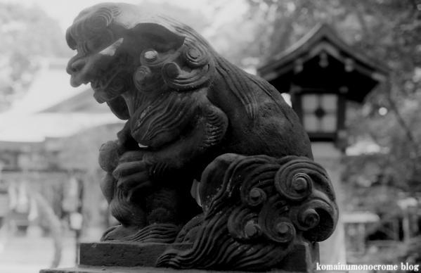 世田谷八幡宮(世田谷区宮坂1