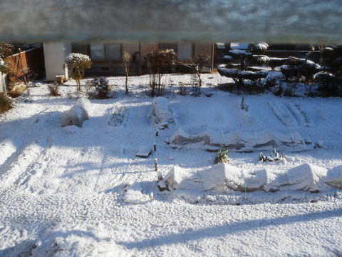 雪、積もった~♪
