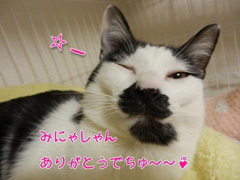 うたこのお目目ぱっちり~♪1