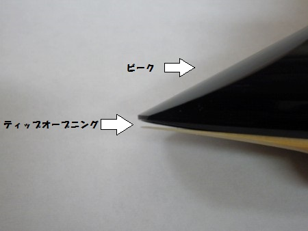 P2021075.jpg