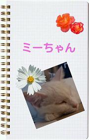 20130915_121322.jpg