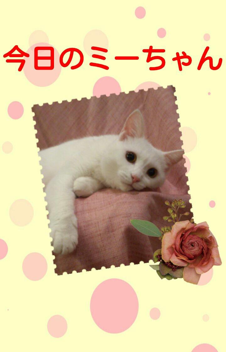 20130925_014012.jpg