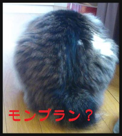LINEcamera_share_2014-09-23-21-07-35.jpg