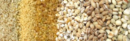 20120318雑穀など (2)