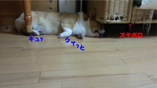 20131015_183145_1.jpg