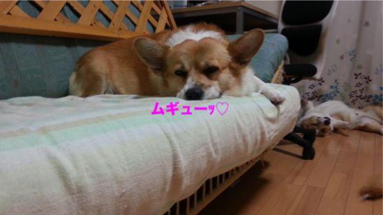 20131015_183618_1.jpg