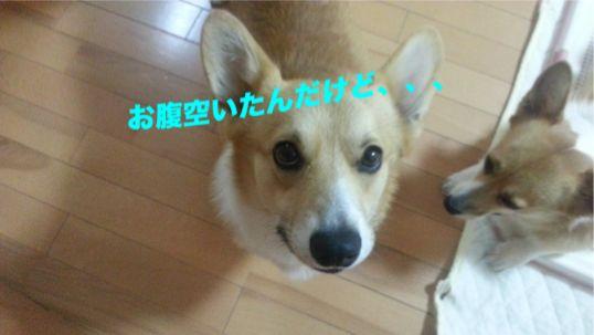 20131017_195509_1.jpg
