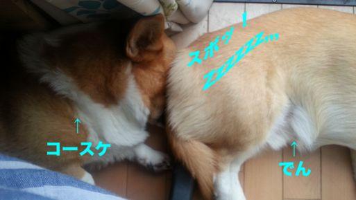 20131025_160759.jpg