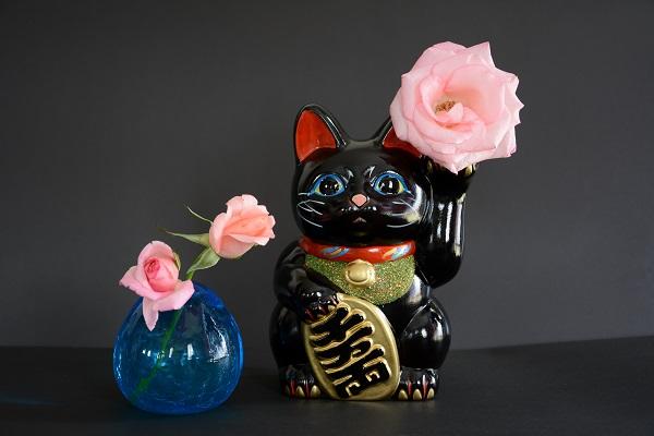 招き猫黒Kotechai_6886s
